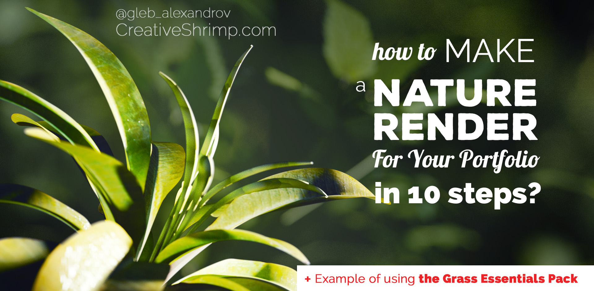 How to create nature render for your portfolio in blender in 10 how to create nature render for your portfolio in blender in 10 steps creative shrimp sciox Images